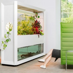 Biophilie Design im Office